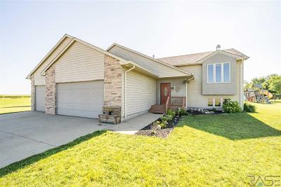 Parker Single Family Home For Sale: 602 Foxtail Dr
