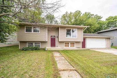 Canton Single Family Home For Sale: 915 E 2nd St
