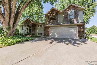 Dell Rapids Single Family Home For Sale: 1206 N Ladelle Ave