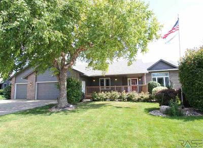 Sioux Falls Single Family Home For Sale: 1404 S Snowberry Trl