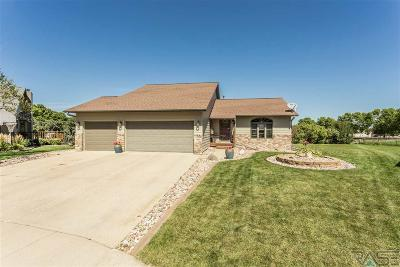 Sioux Falls Single Family Home For Sale: 900 S Jay Cir
