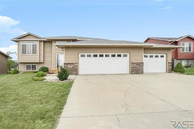 Sioux Falls Single Family Home For Sale: 3809 S Outfield Ave