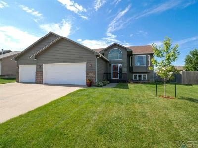 Sioux Falls SD Single Family Home For Sale: $263,500