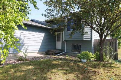 Sioux Falls Single Family Home For Sale: 616 N Shawnee Ave