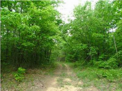 Rising Fawn Residential Lots & Land For Sale: 5 Massey Dr