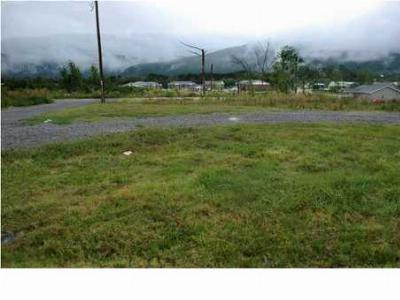 Residential Lots & Land Sold: 11804 S Hwy 11