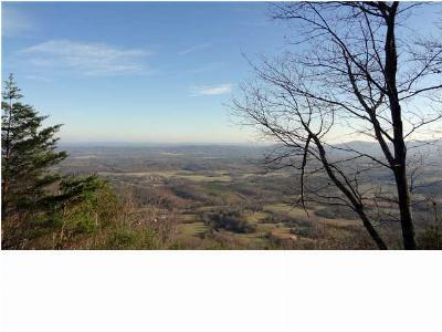 Rising Fawn Residential Lots & Land For Sale: 8800 Hwy 157