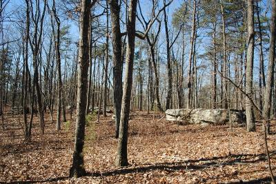 Rising Fawn Residential Lots & Land For Sale: 11944 Hwy 157 #4