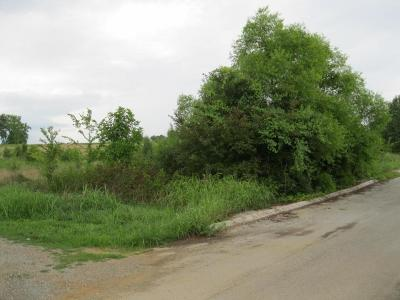 Residential Lots & Land For Sale: 203 Jill Kristin Ln