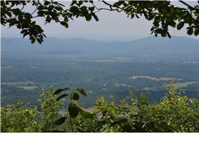 Rising Fawn Residential Lots & Land For Sale: Tract 4 Rock Bluff Rd #Tract 4