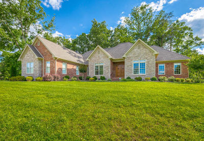 Hixson Single Family Home For Sale: 480 Clear Canyon Dr