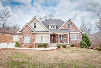 Georgetown Single Family Home For Sale: 251 Swafford Cemetery Rd