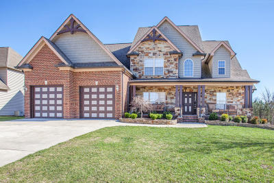 Soddy Daisy Single Family Home For Sale: 1662 Ritz Way