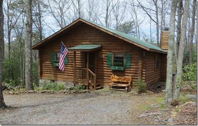 Single Family Home Contingent: 458 Cabin Dr #10