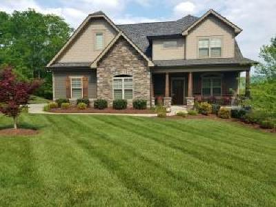 Ringgold Single Family Home For Sale: 244 Sandstone Creek Dr