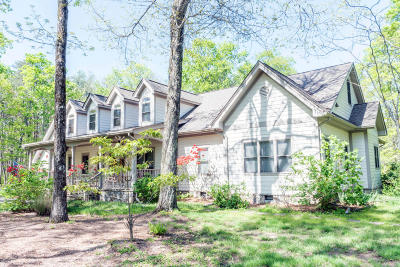 Rising Fawn Single Family Home For Sale: 217 S Shivas Crest