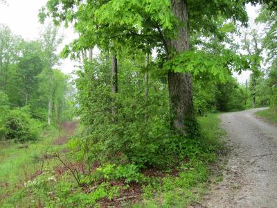 Residential Lots & Land For Sale: 4808 Alabama Rd