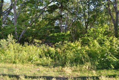 Chattanooga Residential Lots & Land For Sale: 8528 E Brainerd Rd