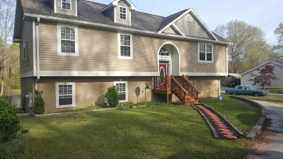 East Brainerd Single Family Home For Sale: 610 Graysville Rd
