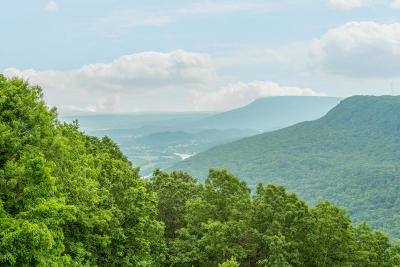 Signal Mountain Single Family Home For Sale: 114 Riverpoint Rd