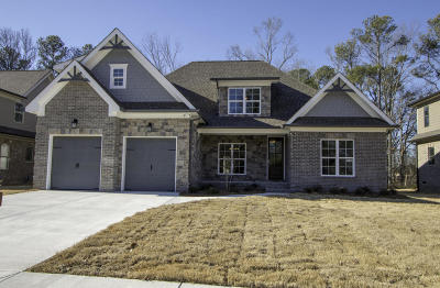 Chattanooga Single Family Home For Sale: 1009 Stone Ledge Ln #Lot 18