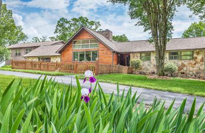 Soddy Daisy Single Family Home For Sale: 694 Soddy Bluff