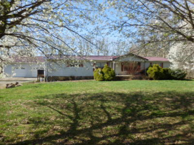 Rising Fawn Single Family Home For Sale: 12118 Hwy 136