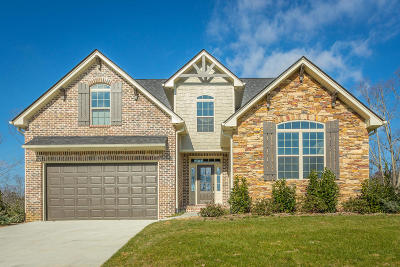 Chattanooga Single Family Home For Sale: 5033 Abigail Ln #Lot 36