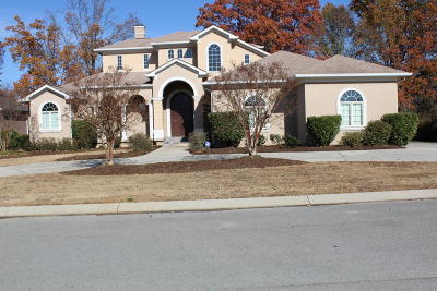 Ringgold Single Family Home For Sale: 149 White Eagle Tr
