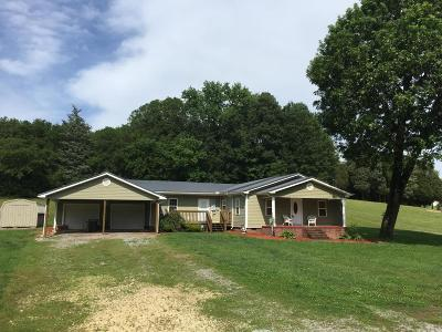 Riceville Single Family Home For Sale: 811 Co Rd 135