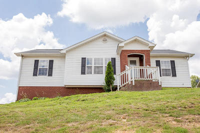 Ooltewah Single Family Home For Sale: 9739 Falcon Crest Dr