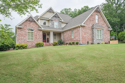 Ringgold Single Family Home For Sale: 1149 Jays Way