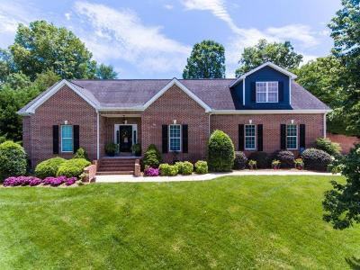 Ringgold Single Family Home For Sale: 192 Lonesome Dove Ln