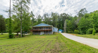 Rising Fawn Single Family Home For Sale: 2096 Byrds Chapel Rd