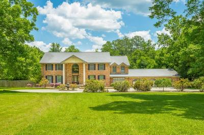 Chattanooga Single Family Home For Sale: 724 Graysville Rd