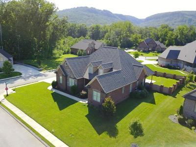 Hixson Single Family Home For Sale: 6276 Deep Canyon Rd
