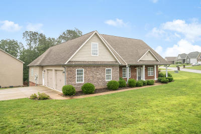 Soddy Daisy Single Family Home For Sale: 631 Sunset Valley Dr