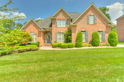 Hixson Single Family Home For Sale: 863 Ivy Manor Ct