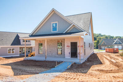 Apison Single Family Home Contingent: 10667 Ferran Way #Lot 56