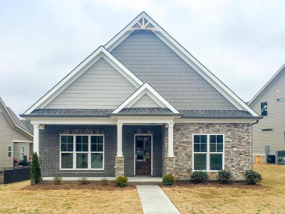 Apison Single Family Home For Sale: 10675 Ferran Way #Lot 57