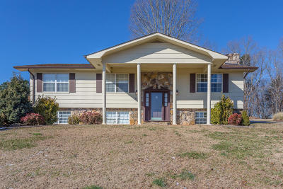 Spring City Single Family Home For Sale: 306 Laurel Dr
