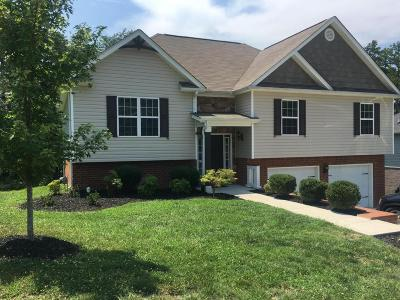 Ooltewah Single Family Home For Sale: 6333 Frankfurt Rd