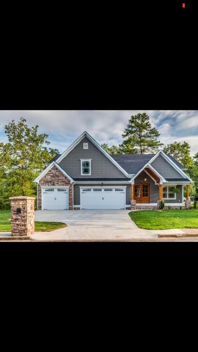 Chattanooga Single Family Home For Sale: 2217 Tristram Rd