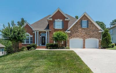 Ooltewah Single Family Home For Sale: 4386 Wellesley Dr