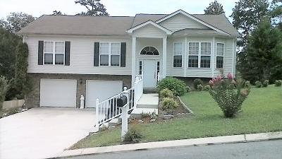 Soddy Daisy Single Family Home For Sale: 523 Hatch Tr