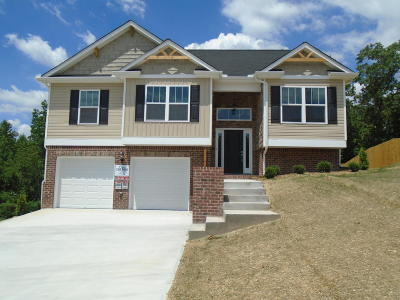 Ooltewah Single Family Home For Sale: 7660 Passport Dr #1133