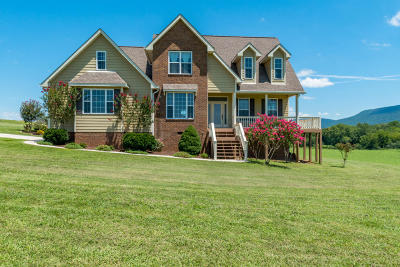 Dunlap Single Family Home For Sale: 51 Rapha Ln
