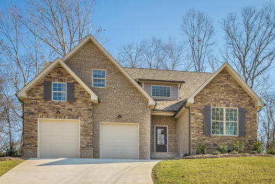 Chattanooga Single Family Home For Sale: 5082 Abigail Ln #Lot 6