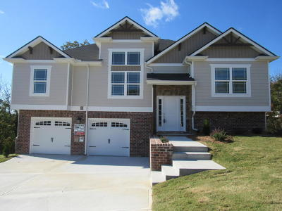 Soddy Daisy Single Family Home For Sale: 1068 Longo Dr #Lot #71