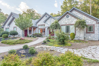Chattanooga Single Family Home For Sale: 580 Skillet Gap Rd
